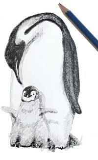 """""""I'm So Happy (penguins)"""" by Jacqueline Hill"""